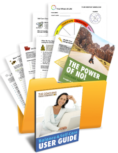 Life Balance and Self-Care Tools, Forms, Exercises, Templates in a Folder