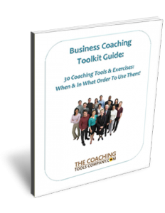 Small Business Coaching Toolkit 3D User Guide Page