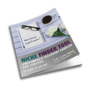 Coaching Niche Finder Tool 3D Image